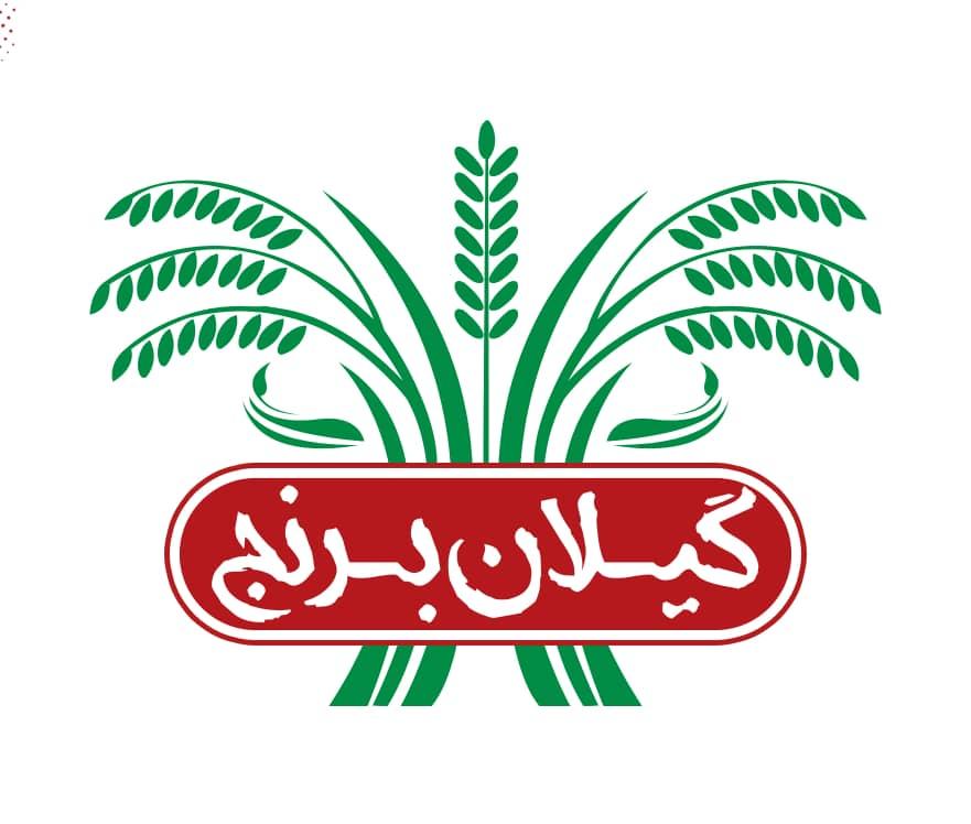 گیلان برنج